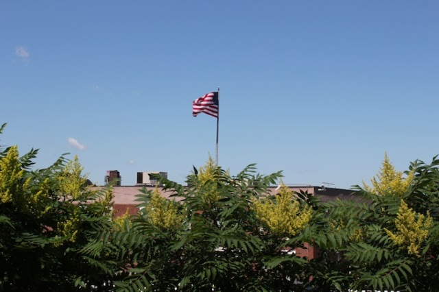 50 – And finally, a lone American flag fluttering above the Department of Sanitation, reminding us of the fragile balance that is the State of the American Union.