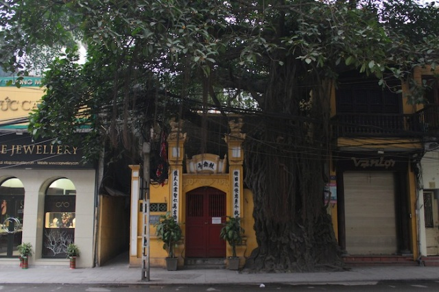 "Temple behind overgrown banyan tree. Script reads ""Drum Dance Pavilion."""