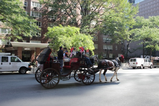 9 – We zoom in onto our anti-hero, who, just for kicks commutes the old-fashioned way everyday, by horse-drawn carriage.