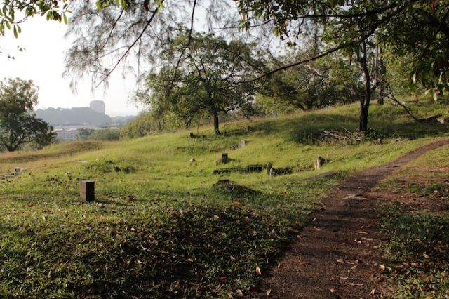 Alternate view of Bukit Cina.