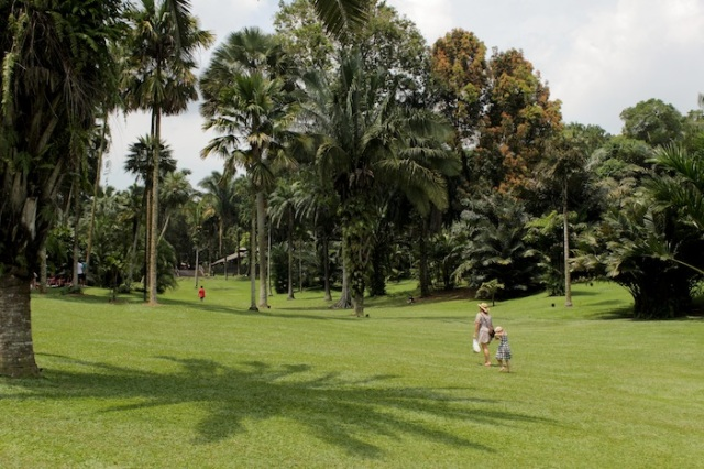 The colonial still lives on in this view of Palm Valley, at the Singapore Botanic Gardens.
