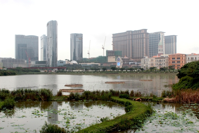 "The Cotai skyline - the brand new casino district is built entirely on reclaimed land.  The Venetian is to the right.  to the left is the ""City of Dreams"" casino."