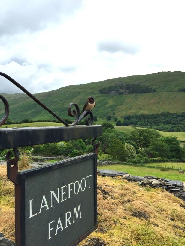 Lanefoot Farm, Troutbeck