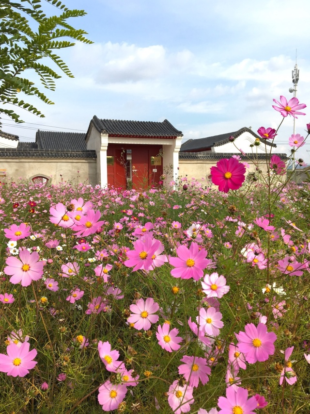 10 - Near Dunhuang